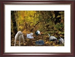 tutti al bosco 29-09-13
