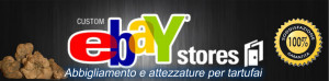 danner ebay