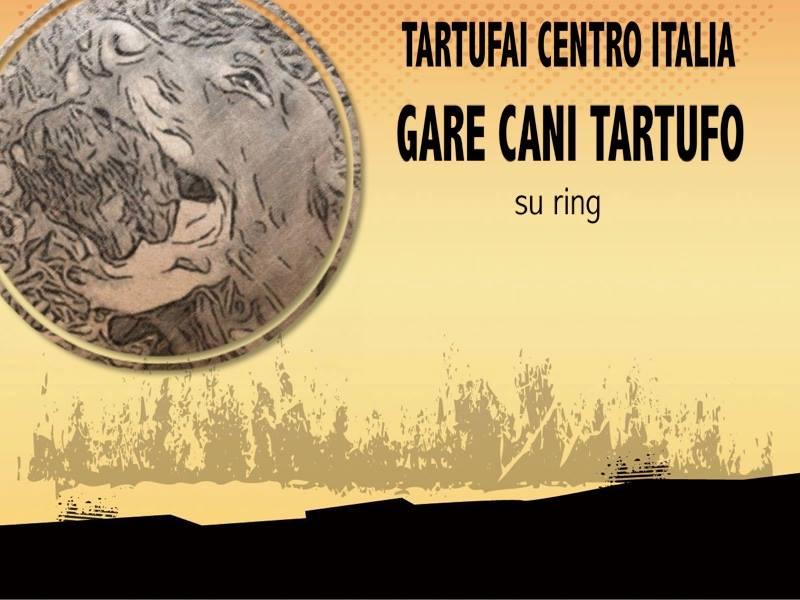 addestramento cani da tartufo perugia italy - photo#36