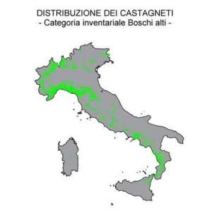 castagneti