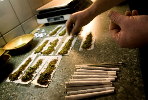tartufo una sostanza simile alla cannabis