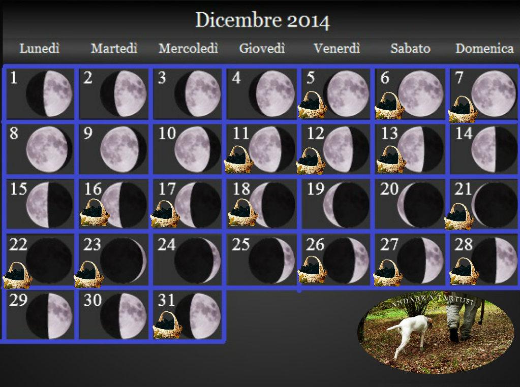 Dicembre 2014