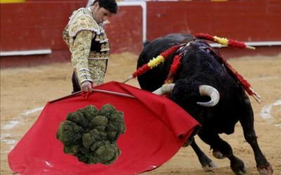 La legislazione Spagnola