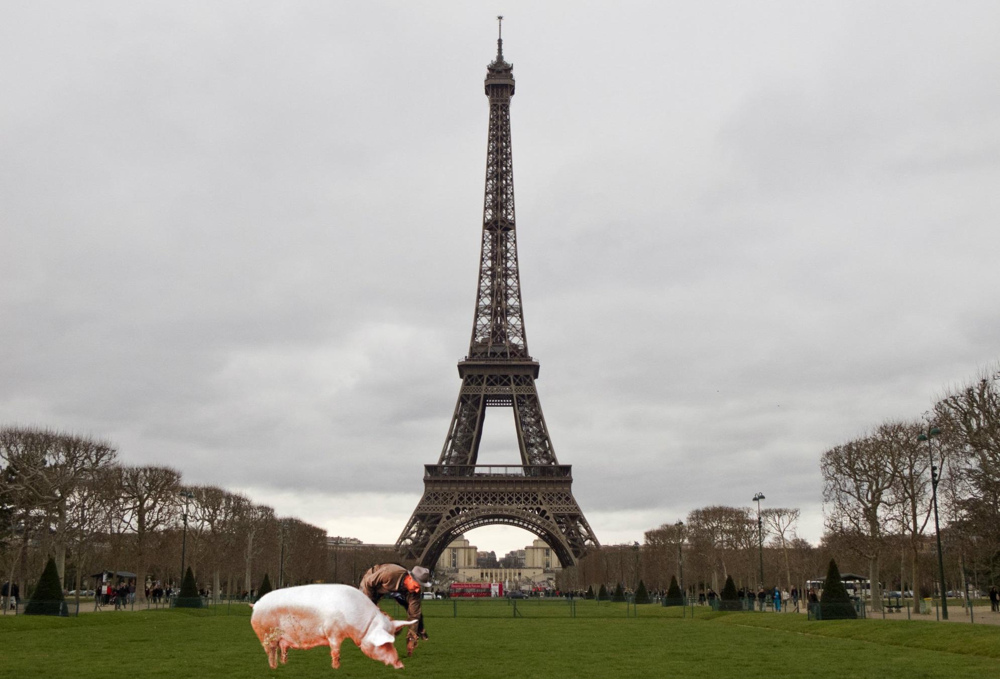 La legislazione Francese