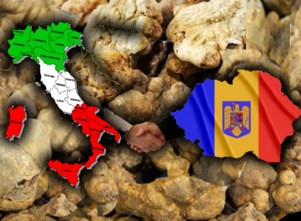 Fermato romeno