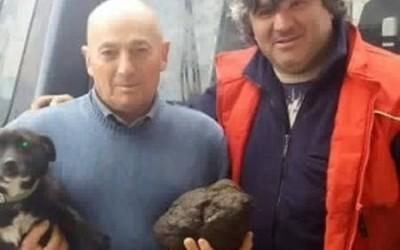 Trovato tartufo record