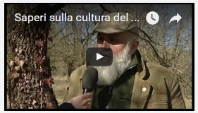 Video interviste ai tartufai