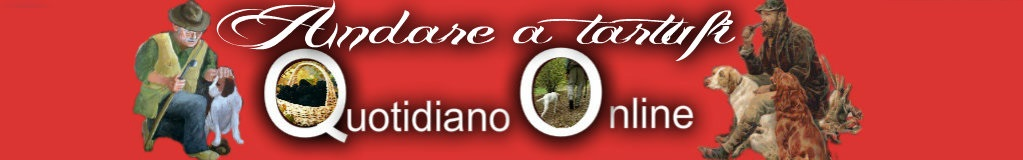 www.andareatartufi.com