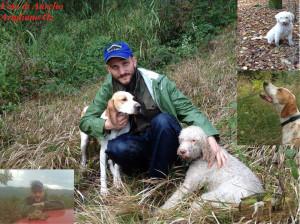 Foto di Aurelio Avigliano collage dei suoi cani