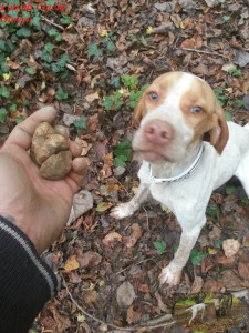Foto di Ciacio Olocco Magnatum Pico con il suo cane da tartufo