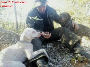 Foto di Francesco Palmiero ritrovamento di un magnatum pico con i suoi cani da tartufo