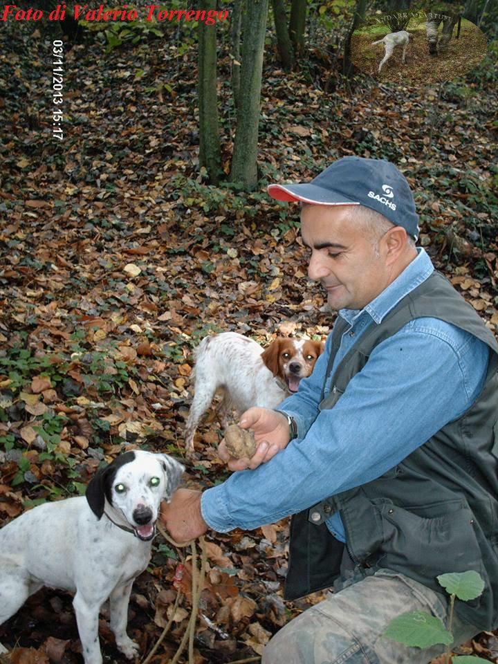 addestramento cani da tartufo perugia italy - photo#22