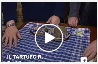 Video tartufi record