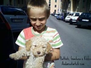 foto-di-leo-battista-gianluca-kikko-cuccioli-di-lagotto-di-umano-da-tartufi