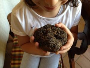 tartufo-scorzone-estivo-pietro-truffle-manna