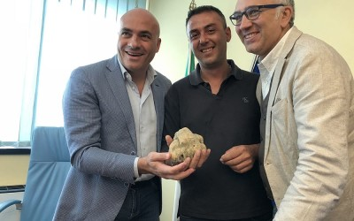 Basilicata Magnatum Pico da 600 grammi - 2017