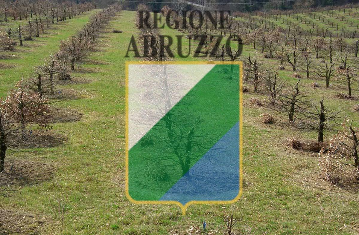 Contributi per la tartuficoltura Abruzzo