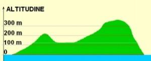 curve-di-livello3