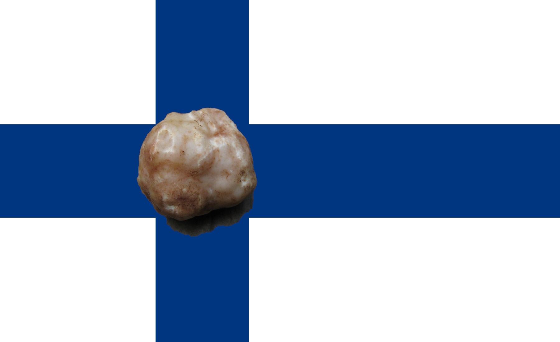 """Tuber Anniae – il """"Bianchetto"""" della Finlandia"""
