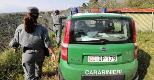 Elenco Carabinieri Forestali regione per regione