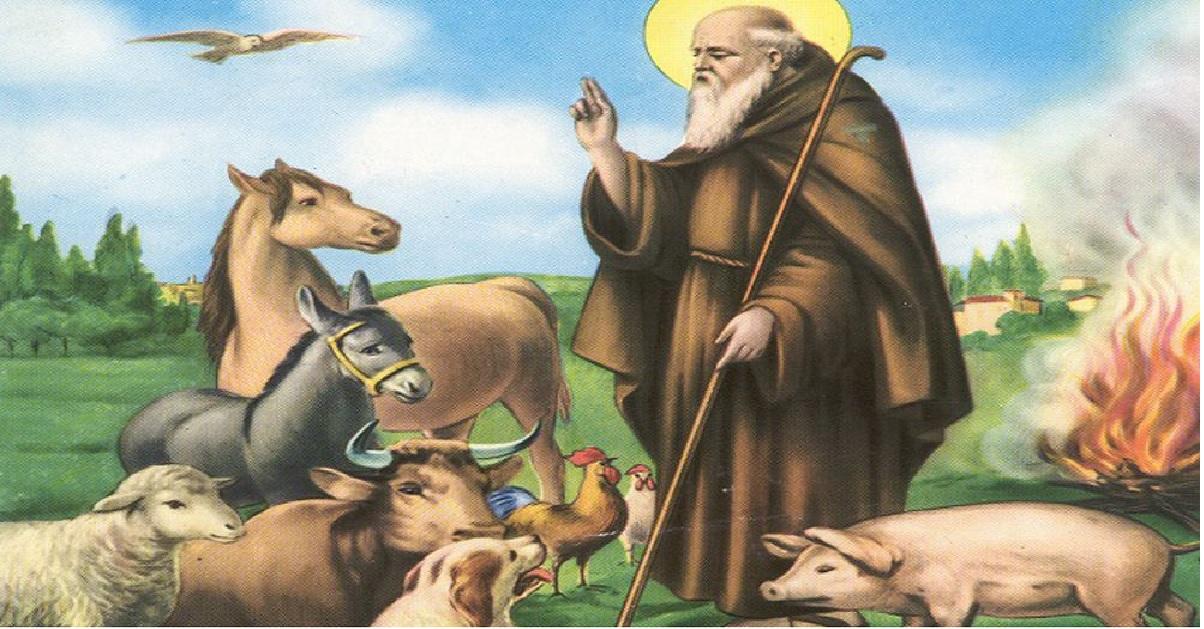 Sant'Antonio Abate, il patrono dei tartufai