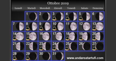 Fasi Lunari Ottobre 2019