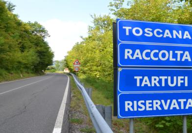 Niente limiti alle tartufaie controllate – Regione Toscana