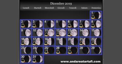 Fasi lunari Dicembre 2019