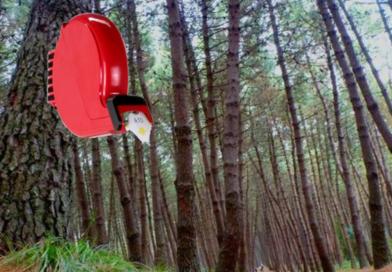 Parco dell'Alta Murgia: Tassa per tutti MA prima i residenti