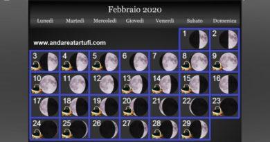 Fasi lunari Febbraio 2020
