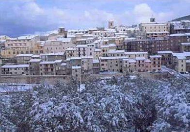 Si aprono le candidature per la gestione della tartufaia di Palazzo Mancinelli
