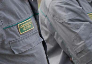 Coronavirus: La forestale intensifica i controlli nei boschi, sanzioni in tutta Italia