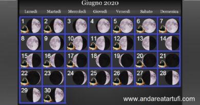 Fasi lunari giugno 2020