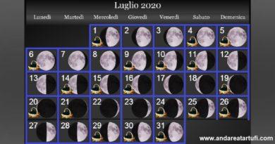 Fasi lunari luglio 2020