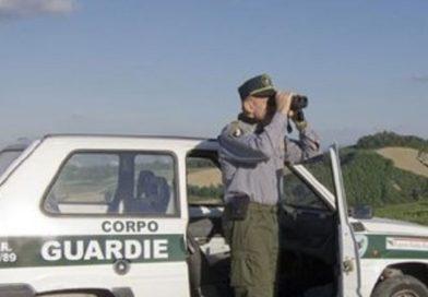 Migliaia di euro di multe e sequestri per i tartufai Abruzzesi