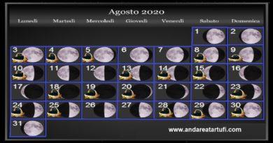 Fasi lunari Agosto 2020