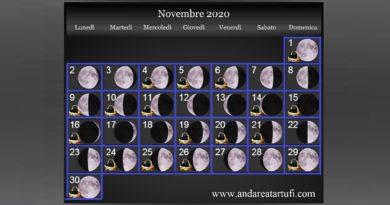 Fasi lunari novembre 2020