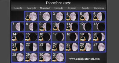 Fasi lunari Dicembre 2020