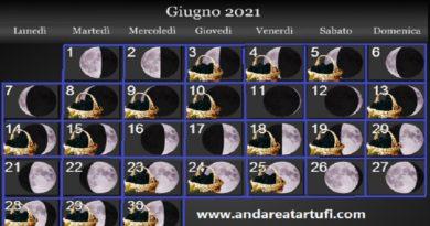 Fasi lunari Giugno 2021