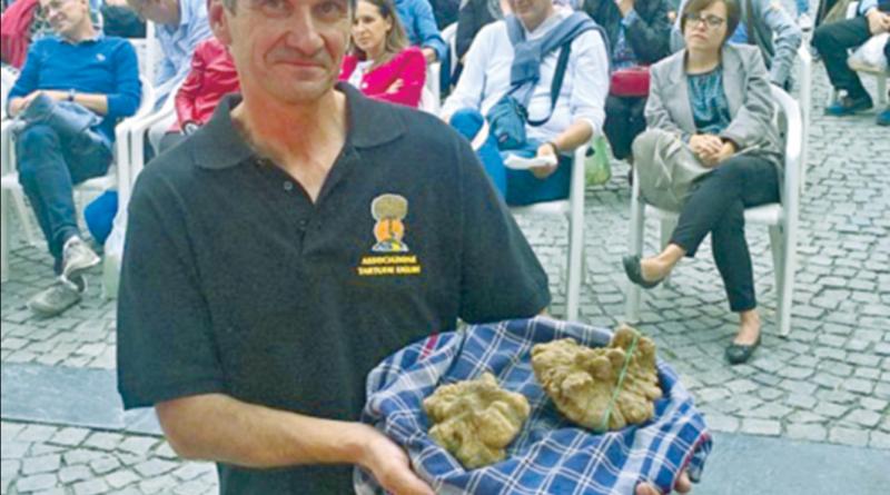 Città del tartufo: Millesimo